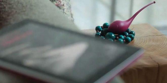 Test du Little Bird - B Sensory, un vibromasseur connecter à vos livres